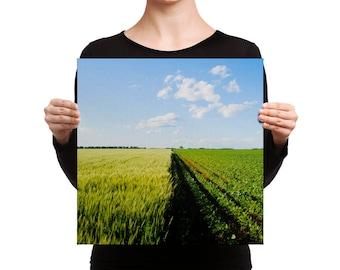 Canvas - Red Silo Original Art - Green Wheat & Beans Canvas