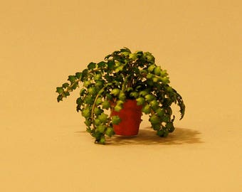 1/2 inch scale miniature-Ivy Plant