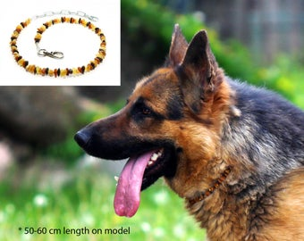 Raw Baltic Amber Anti-Tick Anti Flea Dog Collar Necklace. Choose the length!
