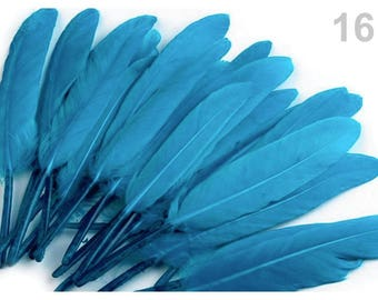 16 - 9-14 cm Blue duck feathers
