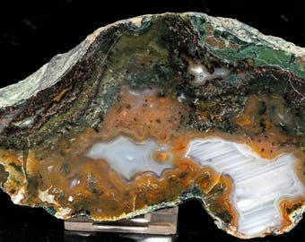 Beautiful Polished Waterline Moss Agate End Cut