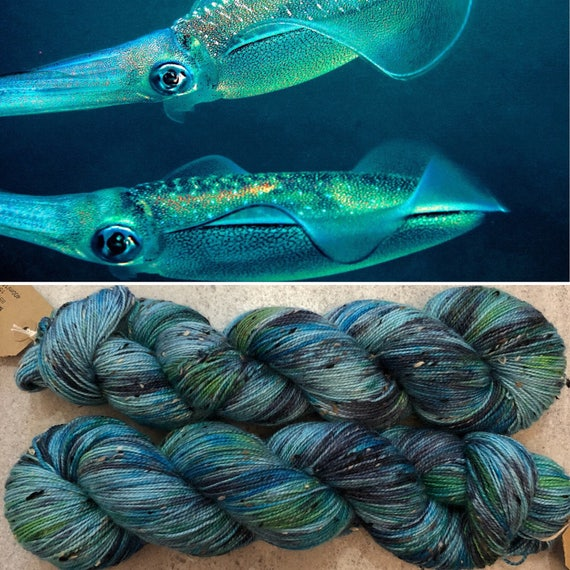 Bigfin Reef Squid Donegal Sock, speckled merino yarn with neps
