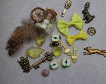 The treasures of Alice - yellow set of charms