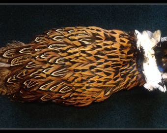 "Pheasant pelt from the back of a Ringneck rooster pheasant 9 1/2"" long"