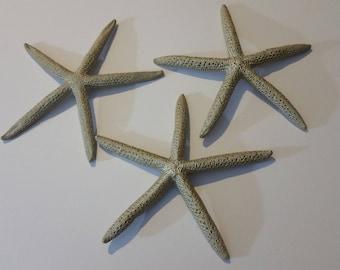 Starfish Decor / Nautical Nursery Decor / Beach House Decor /Set Of 3   6