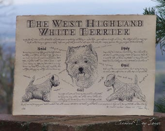 Antique styled dog standard - West Highland White Terrier