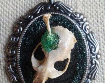 """Eveything Bone Pendant Necklace, """"Smashing"""""""