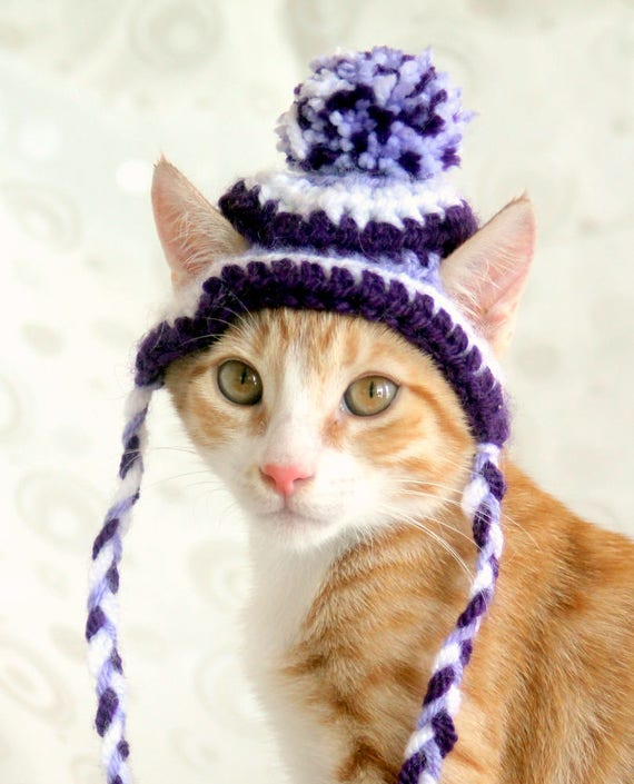 Cast Of The Cat In The Hat: Hat For Cats Toboggan Cat Hat Beanie For Cast & Kittens Cat