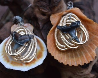 Upcycled Shark Tooth and Shell Earrings