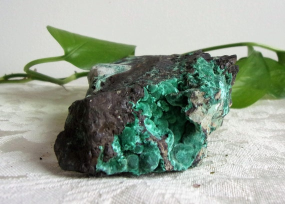 Boytryoidal Malachite Palm Specimen