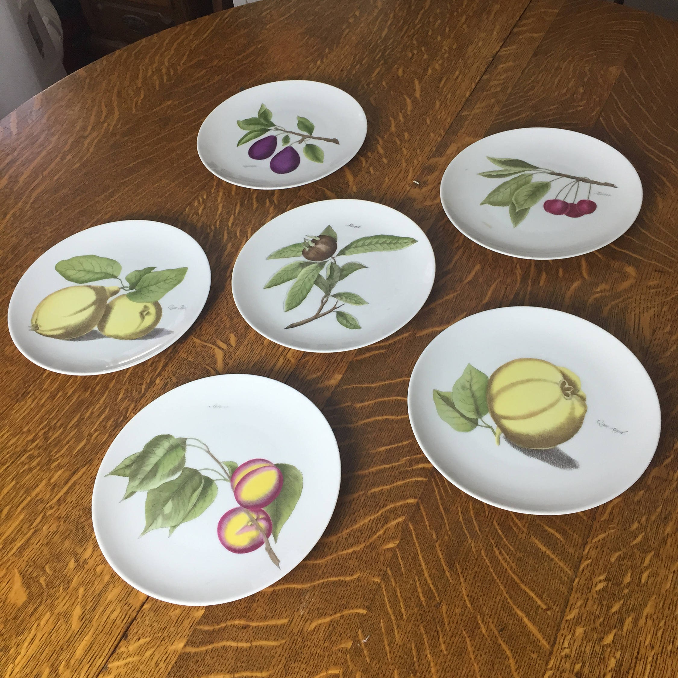 Set of 6 Hutschenreuther Pasco Germany White Fruit Plates 8  Dessert Luncheon Plate & Set of 6 Hutschenreuther Pasco Germany White Fruit Plates 8 Dessert ...