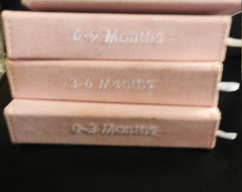 4 Book Set of Pink Baby Photo Albums, 0-3, 3-6, 6-9, 9-12 months