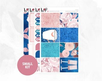Rosé Small Kit | Matte Glossy Planner Stickers