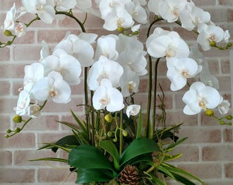 Artificial Farland Orchid, White