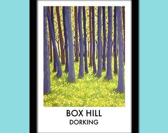 Box Hill, Dorking Travel Poster