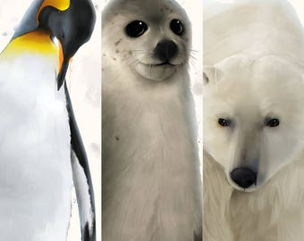 The Winter Animals Collection