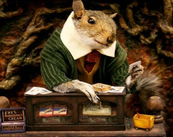 Taxidermy Squirrel and his Toy Shop ~ oddities, curio, curiosities
