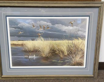 Dark Sky - Pintails by Maynard Reece in 1984, #500/950, signed by artist