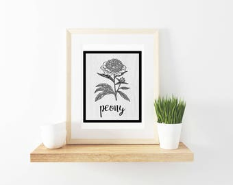 Farmhouse printable, farmhouse print, peony, seed packet, digital download