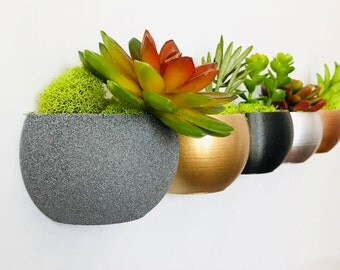 Metallic Round Magnetic Succulent Planter(s) - 3D Printed