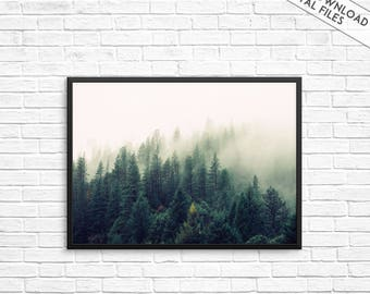 Trees wall art, Tree print, Forest prints, Nature wall art, Nature photography, Forest Photography, Forest Wall Art, Nature Print, Tree art