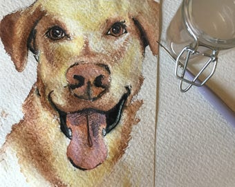 Fun, Custom, Watercolor Pet Paintings