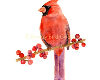 Northern Cardinal Print, Watercolour Redbird, Bird Illustration, Christmas Art, Common Cardinal Print, Watercolor Bird Print