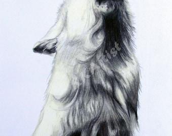 White Wolf PRINT