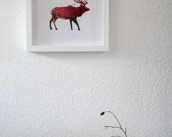 Stag Watercolour Print, Animal Illustration