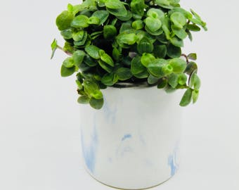 Small white concrete planter with blue mottling, concrete pot, plant pot, cactus pot, concrete vase, concrete vessel