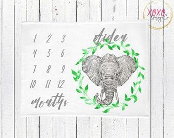 Elephant Baby Blanket Personalized / Baby Milestone Blanket / Monthly Milestone Blanket Boy / Soft Minky Baby Blanket / Receiving Blanket