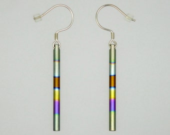 A pair of anodized titanium and silver earrings.