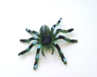 Miniature Spider for Terrarium