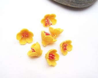7 coral and yellow flowers