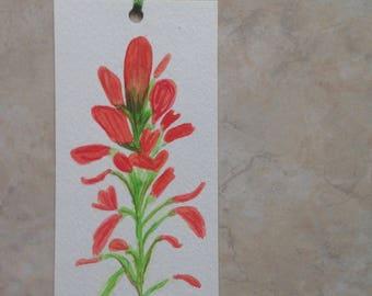 Indian Paintbrush Watercolor Floral Bookmark