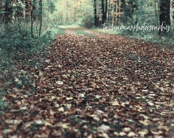 Where we Wander - Forest, Daydream, Surreal, Landscape, Autumn, Fall, Home Decor, Wall Art