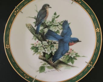 Bluebird from the songbird's of Roger Tony Peterson collectible plate, limited edition, C1731 limited edition.