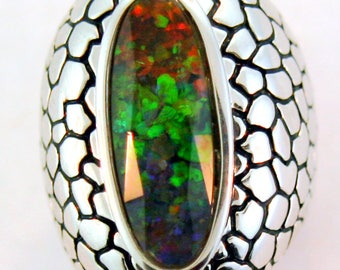 Long oval shape Canadian Ammolite sterling  silver ring