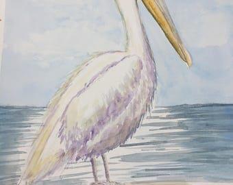 Pelican Original Watercolor