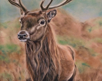 Stag Wall Art - Stag Print - Stag Picture - Stag Painting - Woodland Animal - Animal Lover Gift -  British Wildlife - Animal Print