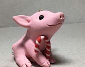 Pig Christmas Ornament by Shelly Schwartz