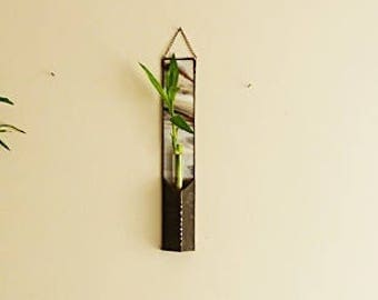 Lucky Bamboo Stalk, Hanging Glass Planter, Stained Glass Panel, Chocolate Brown, and White Blended Colors