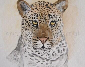 leopard dessin à l'encre, animaux, nature, félins, art, dessin original signé