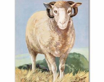 """Sheep Art Print (Farmhouse Decor, Nursery Wall Decor) Farm Animals Print --- """"Follow the Leader"""""""