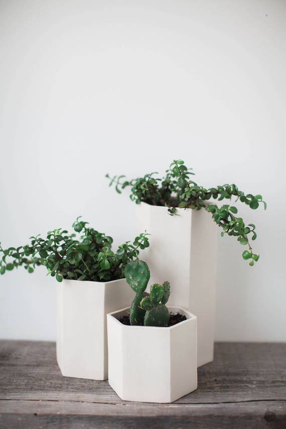 Ceramic Tabletop Planters, Porcelain Hexagon Set