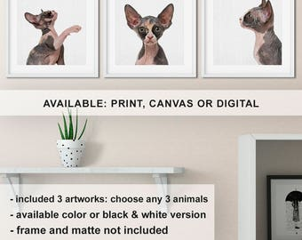 Sphynx Cat Poster, Sphynx Cats Gifts, Sphynx Cat Art, Cat Sphynx, Hairless Cat Gift, Hairless Cat Art, Hairless Cat Print Print/Canvas/Digi