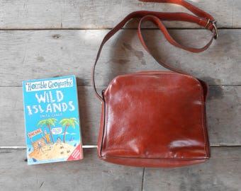 Vintage Leather Bag TAXIER Leather Purse , Crossbody Bag / Walnut red brown / Small