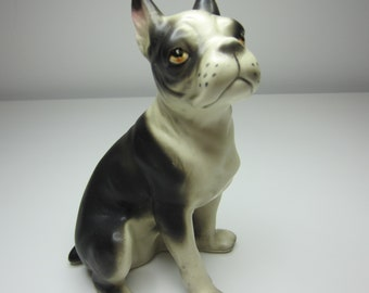 Vintage Boston Terrier - Made in Japan 1950s - Great vintage condition - Gorgeous!