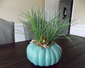 Coastal Pumpkin-Nautical Pumpkins-Coastal Fall Decor-Fall Beach Decor-Fall Pumpkin Decor-Pumpkin Centerpiece-Pumpkin Center Piece-Halloween