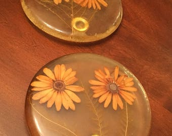 Vintage Acrylic Trivets Set of 2 with Dried Flowers Lucite Hot Plates